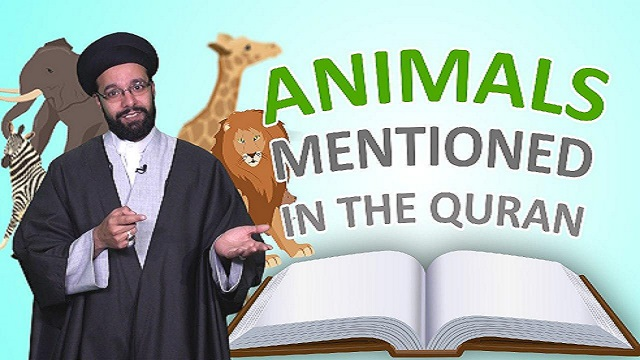 All the Animals mentioned in the Quran | One Minute Wisdom